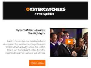 oystercatchers newsletter